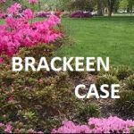 Read CAICW's Amicus in the Brackeen ICWA case -