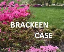 Read CAICW's Amicus in the Brackeen ICWA case